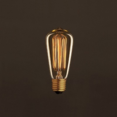 Vintage Edison ljuskälla Guld ST48 med kolfilament cage 30W E27 dimbar 2000K
